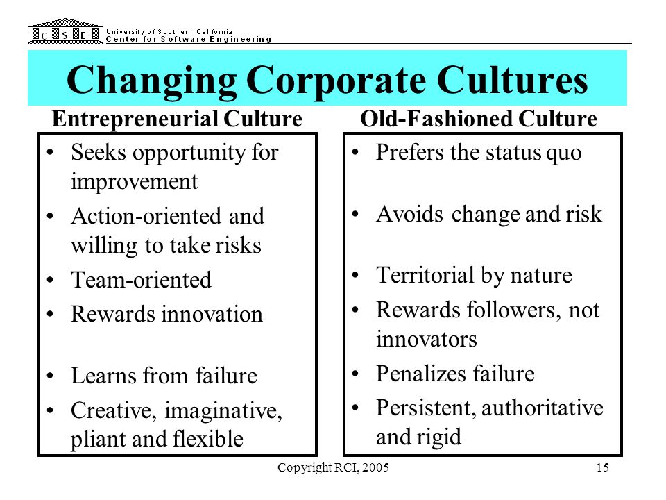 Copyright RCI, 200515 Changing Corporate Cultures Seeks opportunity for improvement Action-oriented and willing to take risks Team-oriented Rewards in