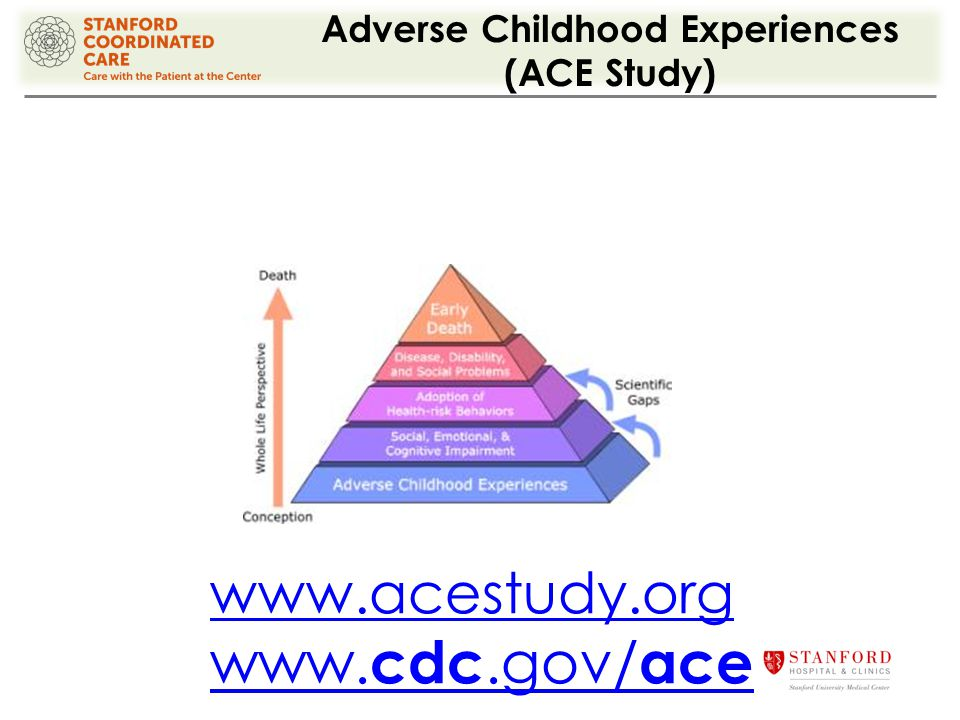 Adverse Childhood Experiences (ACE Study) www.acestudy.org www. cdc.gov/ ace