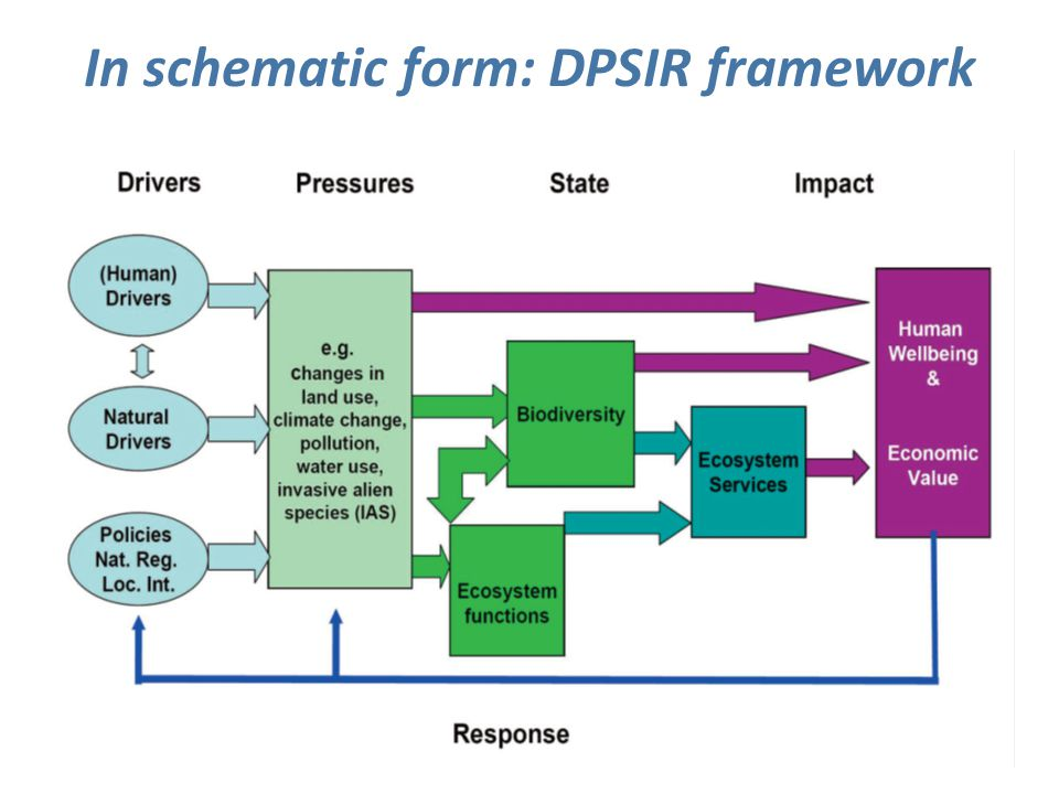 In schematic form: DPSIR framework 14