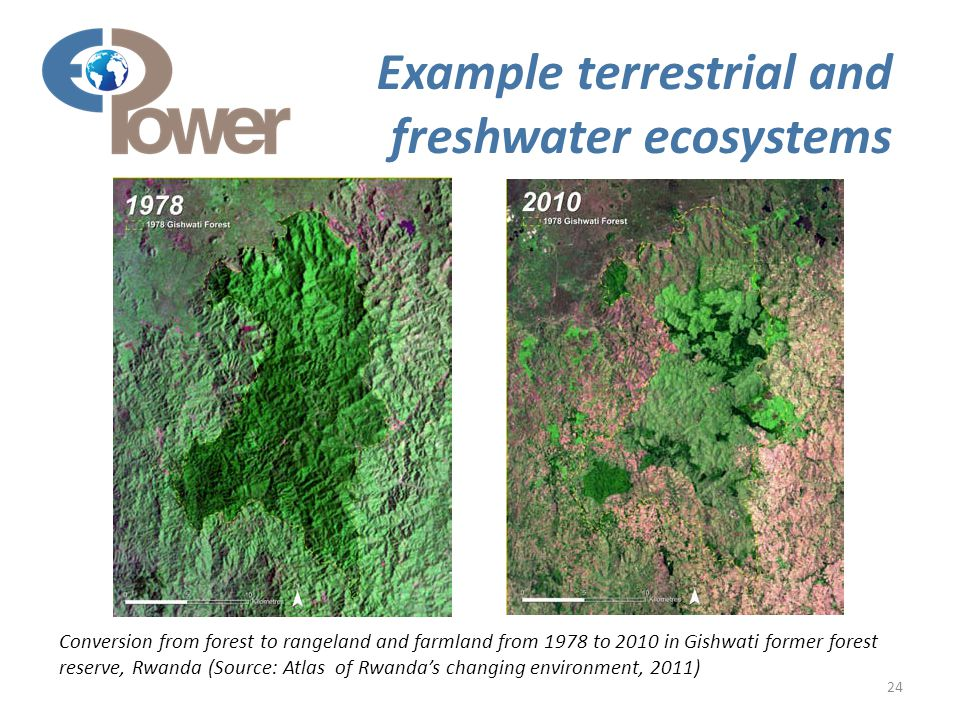 24 Example terrestrial and freshwater ecosystems Conversion from forest to rangeland and farmland from 1978 to 2010 in Gishwati former forest reserve, Rwanda (Source: Atlas of Rwanda's changing environment, 2011)