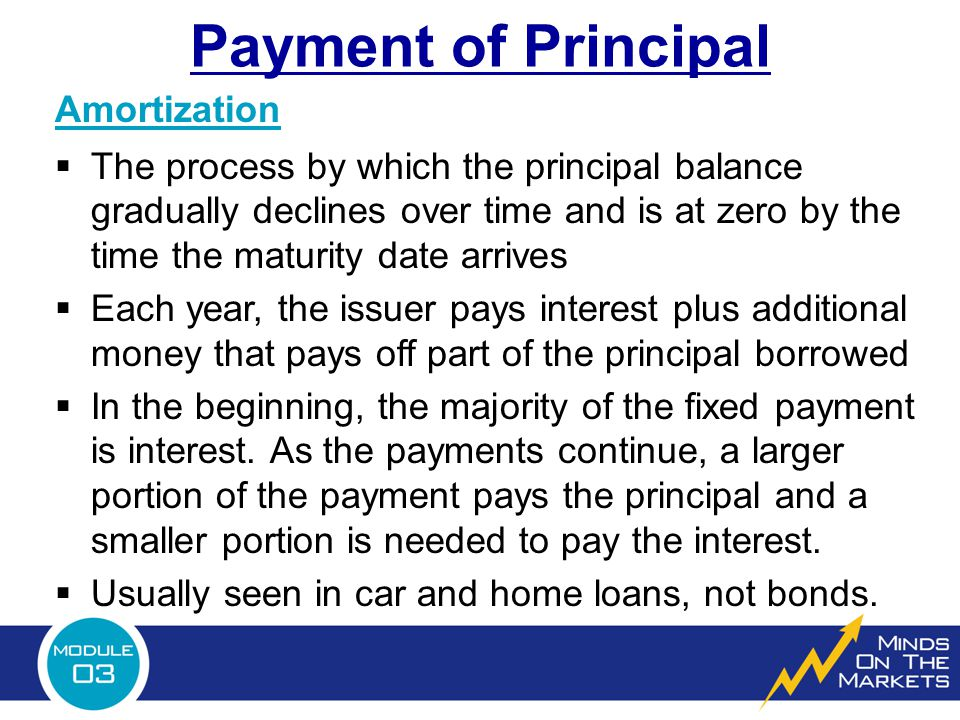 Payment of Principal Amortization  The process by which the principal balance gradually declines over time and is at zero by the time the maturity date arrives  Each year, the issuer pays interest plus additional money that pays off part of the principal borrowed  In the beginning, the majority of the fixed payment is interest.