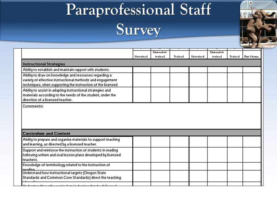 Paraprofessional Staff Survey