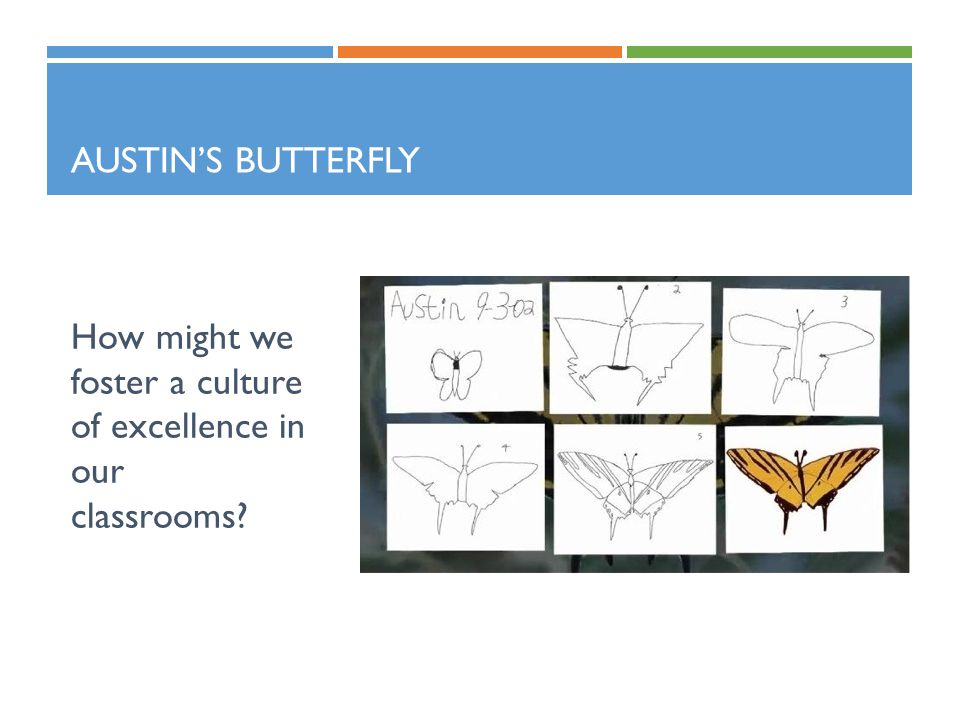 AUSTIN'S BUTTERFLY How might we foster a culture of excellence in our classrooms?