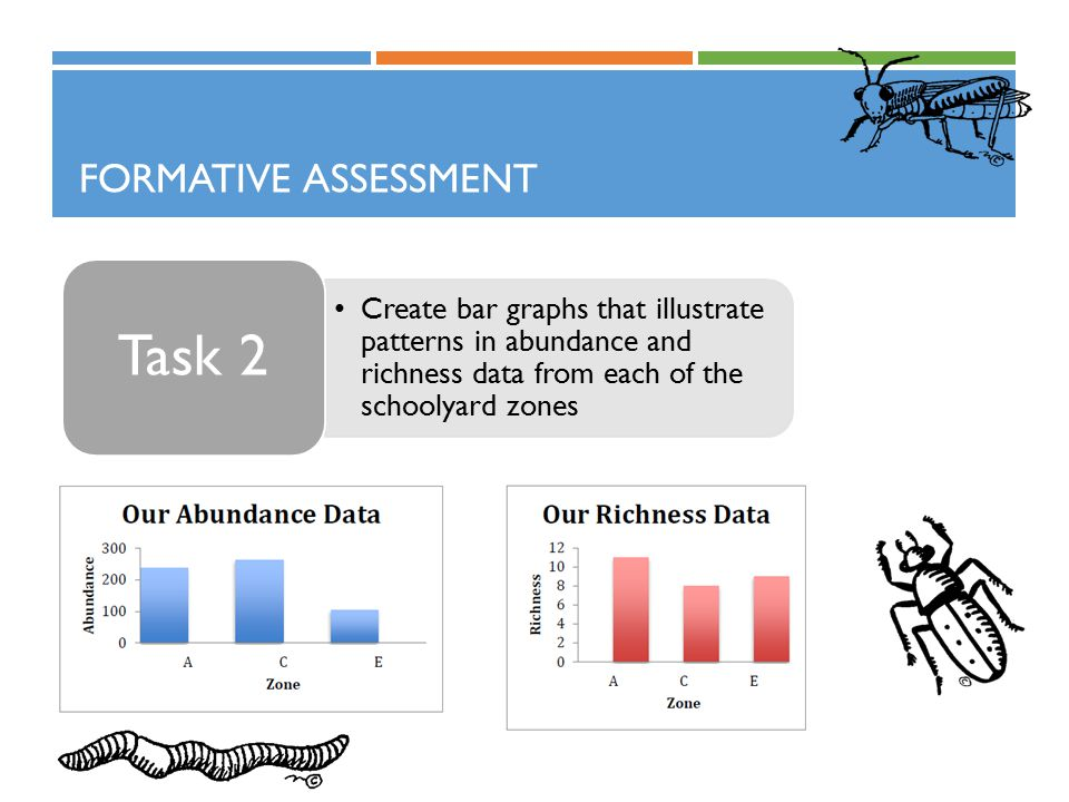 FORMATIVE ASSESSMENT Create bar graphs that illustrate patterns in abundance and richness data from each of the schoolyard zones Task 2