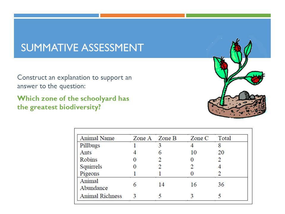SUMMATIVE ASSESSMENT Construct an explanation to support an answer to the question: Which zone of the schoolyard has the greatest biodiversity?