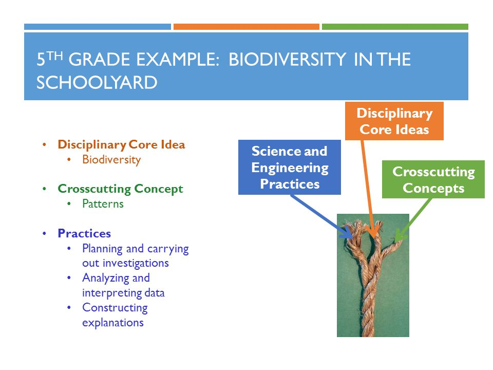 5 TH GRADE EXAMPLE: BIODIVERSITY IN THE SCHOOLYARD Disciplinary Core Idea Biodiversity Crosscutting Concept Patterns Practices Planning and carrying out investigations Analyzing and interpreting data Constructing explanations Science and Engineering Practices Crosscutting Concepts Disciplinary Core Ideas