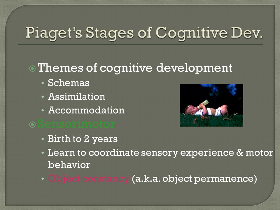  Themes of cognitive development Schemas Assimilation Accommodation  Sensorimotor Birth to 2 years Learn to coordinate sensory experience & motor behavior Object constancy (a.k.a.