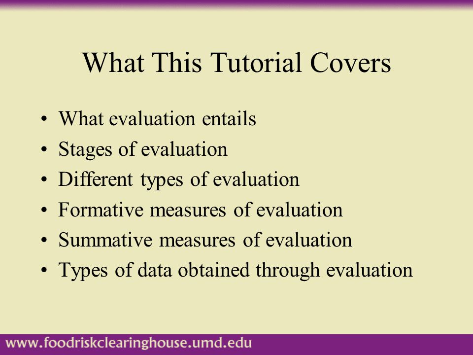What This Tutorial Covers What evaluation entails Stages of evaluation Different types of evaluation Formative measures of evaluation Summative measures of evaluation Types of data obtained through evaluation