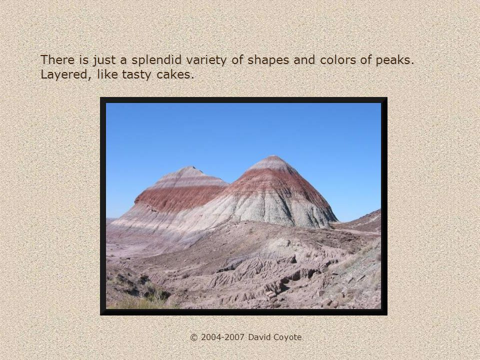 © 2004-2007 David Coyote There is just a splendid variety of shapes and colors of peaks.