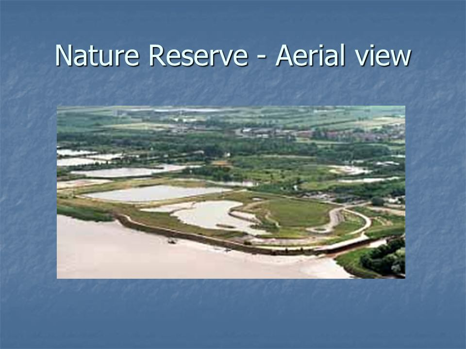 Nature Reserve - Aerial view