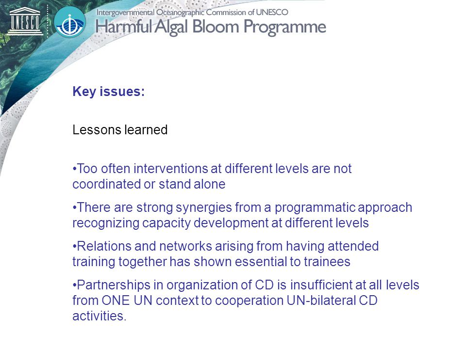 Key issues: Lessons learned Too often interventions at different levels are not coordinated or stand alone There are strong synergies from a programmatic approach recognizing capacity development at different levels Relations and networks arising from having attended training together has shown essential to trainees Partnerships in organization of CD is insufficient at all levels from ONE UN context to cooperation UN-bilateral CD activities.