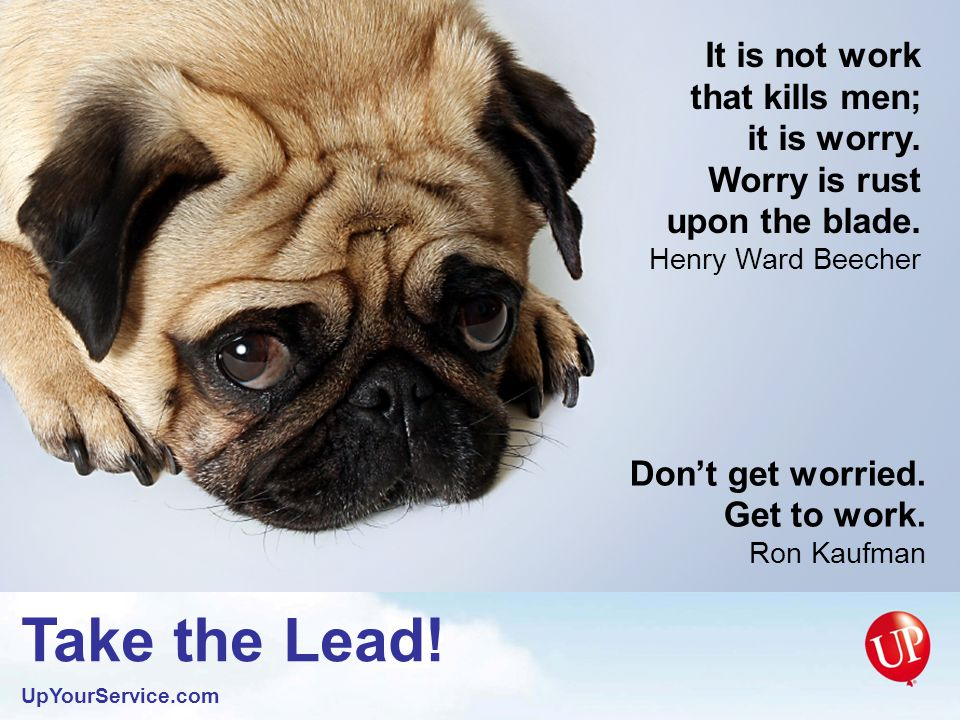 Take the Lead. UpYourService.com The successful man is the average man, focused.