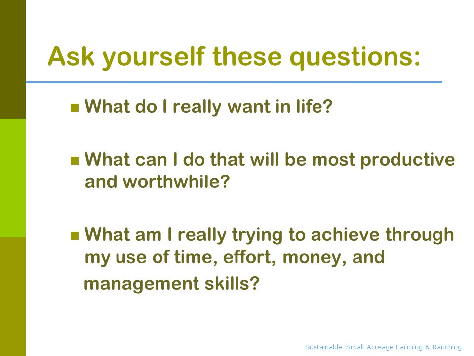 Ask yourself these questions: What do I really want in life.