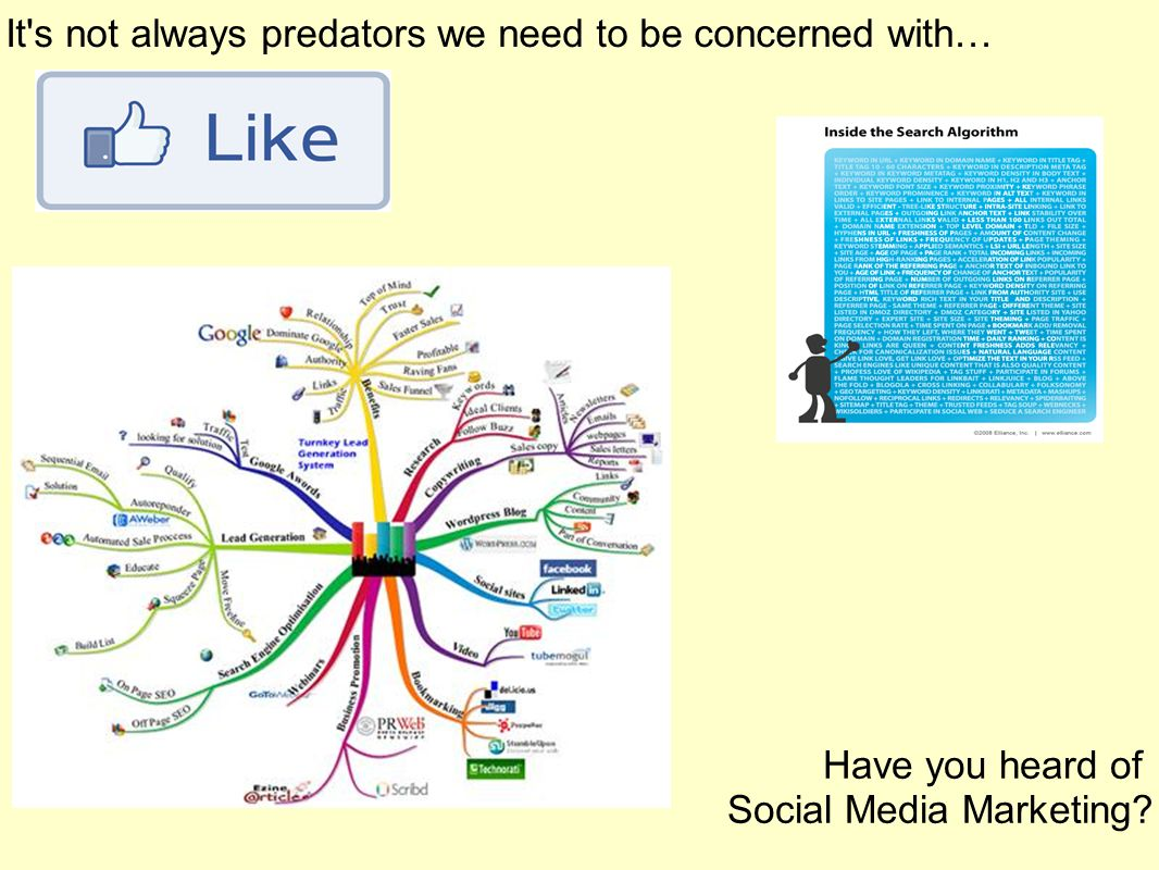It s not always predators we need to be concerned with… Have you heard of Social Media Marketing