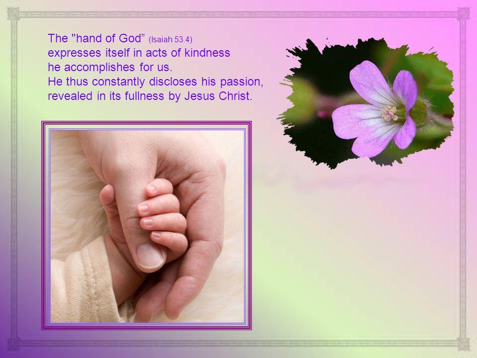 3 rd Sunday of Advent - 2013