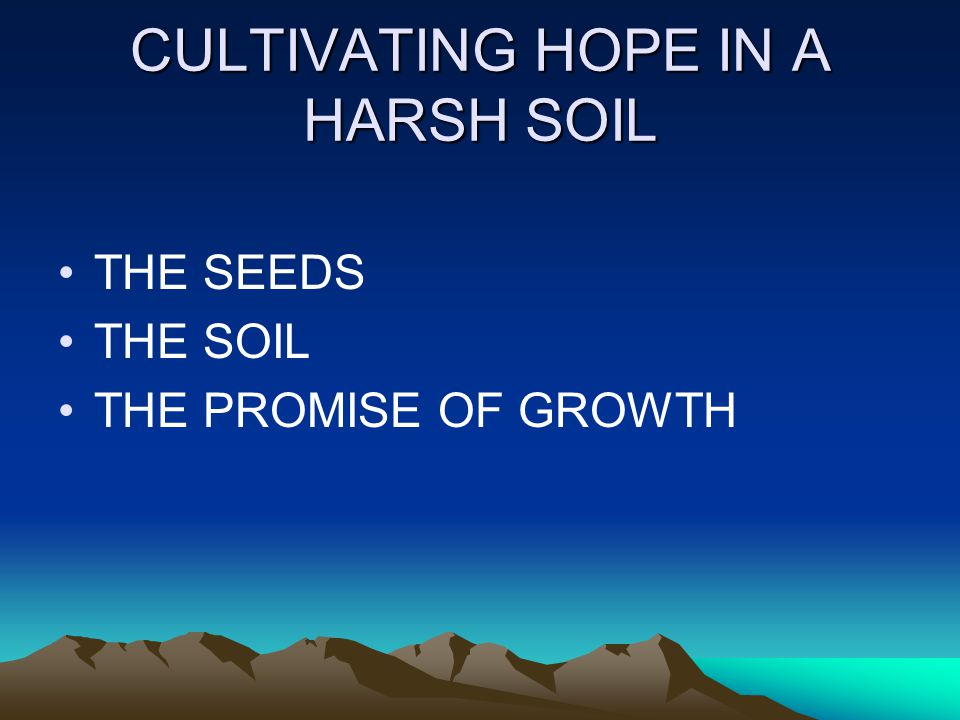 CULTIVATING HOPE IN A HARSH SOIL THE SEEDS THE SOIL THE PROMISE OF GROWTH