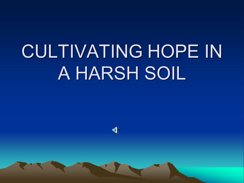 CULTIVATING HOPE IN A HARSH SOIL