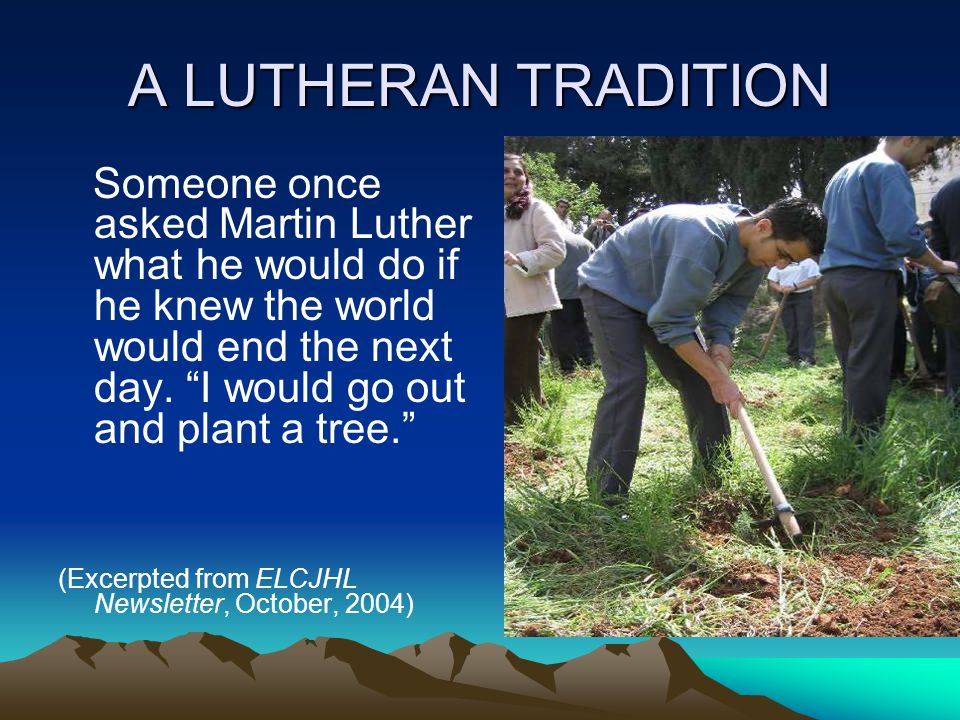 "A LUTHERAN TRADITION Someone once asked Martin Luther what he would do if he knew the world would end the next day. ""I would go out and plant a tree."""