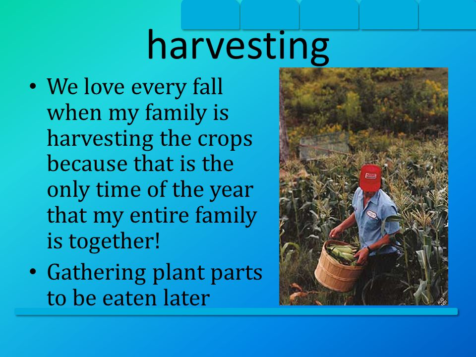 harvesting Example: picking fruit and/ or vegetables; picking cotton Non-example: going to the market to get fruit