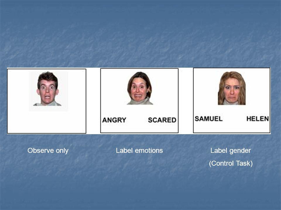 Observe onlyLabel emotionsLabel gender (Control Task)