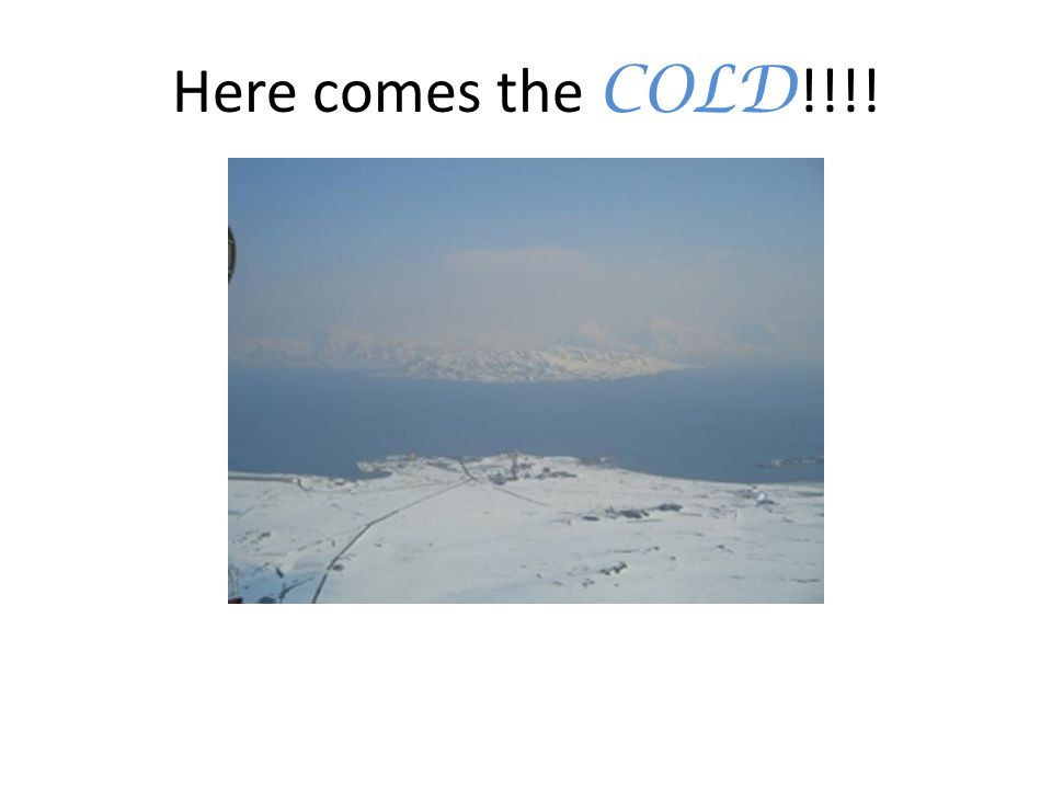 Here comes the COLD !!!!