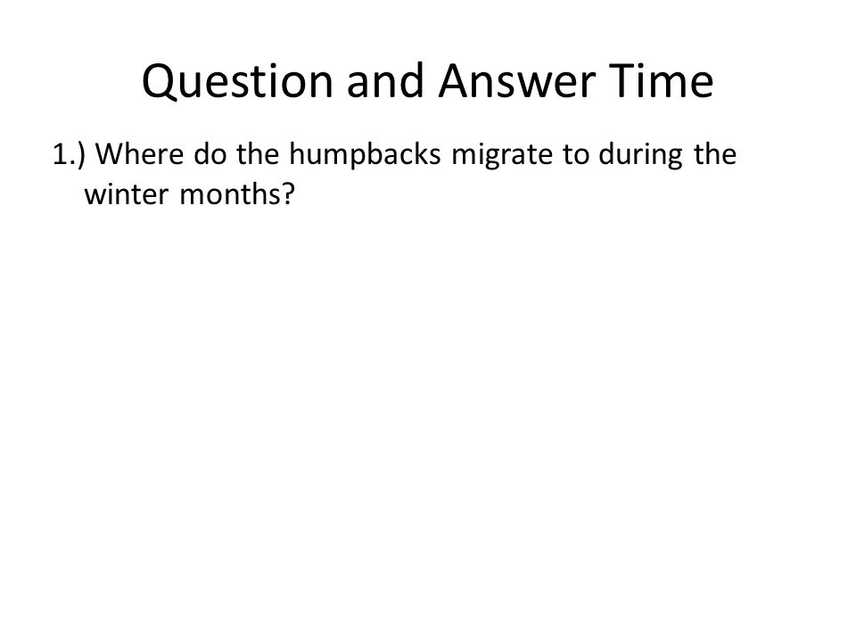 Question and Answer Time 1.) Where do the humpbacks migrate to during the winter months?