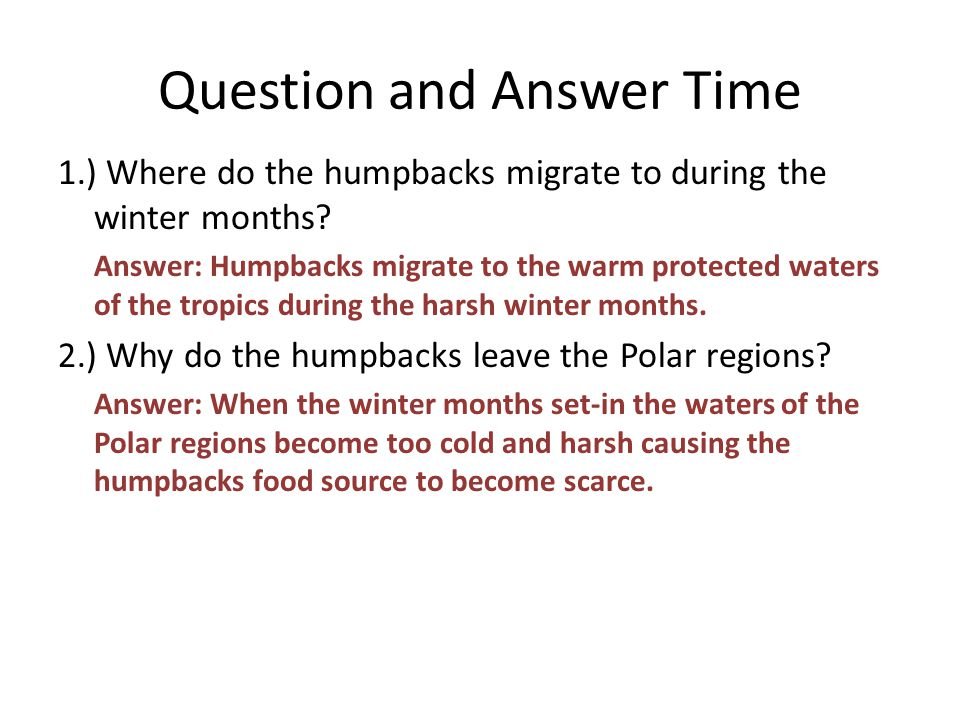Question and Answer Time 1.) Where do the humpbacks migrate to during the winter months.