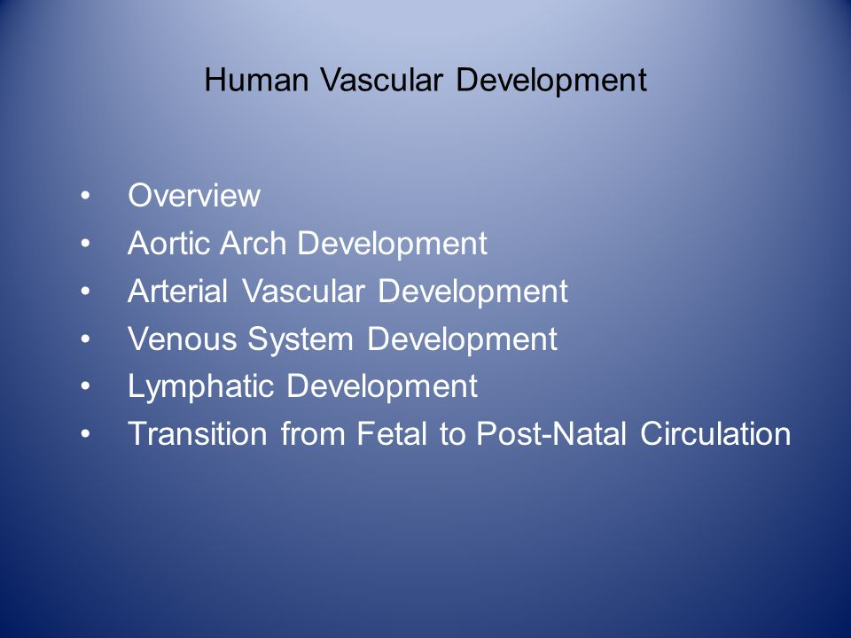 Human Vascular Development Overview Aortic Arch Development Arterial Vascular Development Venous System Development Lymphatic Development Transition from Fetal to Post-Natal Circulation