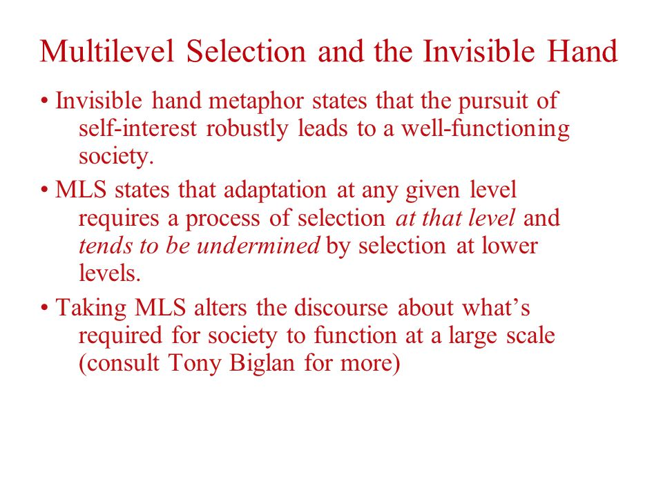 Multilevel Selection and the Invisible Hand Invisible hand metaphor states that the pursuit of self-interest robustly leads to a well-functioning society.
