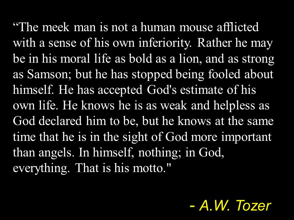 """The meek man is not a human mouse afflicted with a sense of his own inferiority. Rather he may be in his moral life as bold as a lion, and as strong"