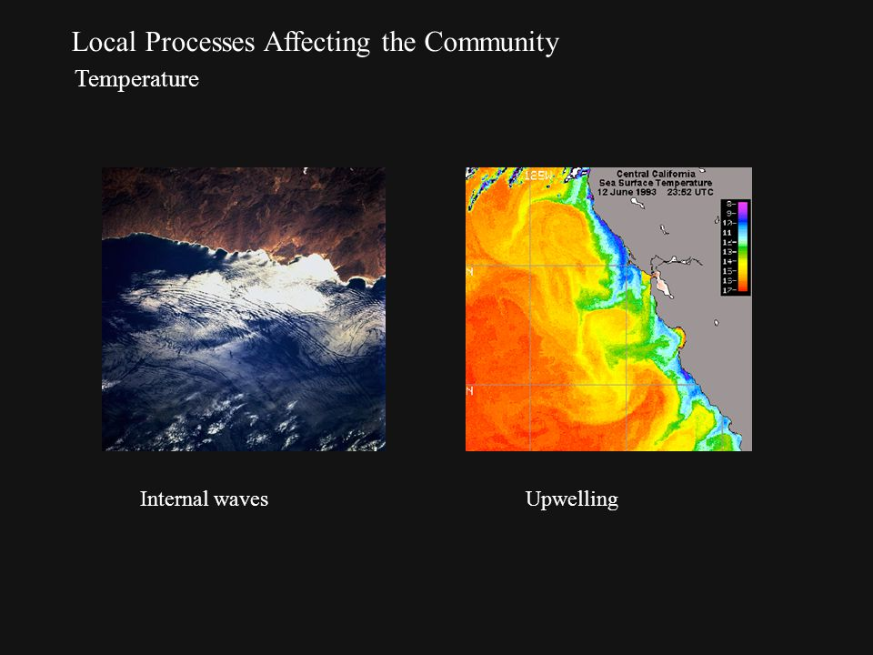 Local Processes Affecting the Community Temperature Internal wavesUpwelling
