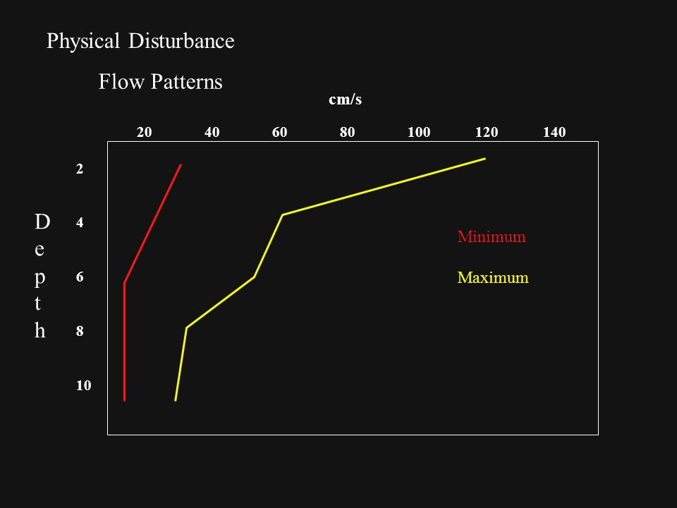 Physical Disturbance Flow Patterns 20406080100120140 cm/s 2 4 6 8 10 Minimum Maximum DepthDepth