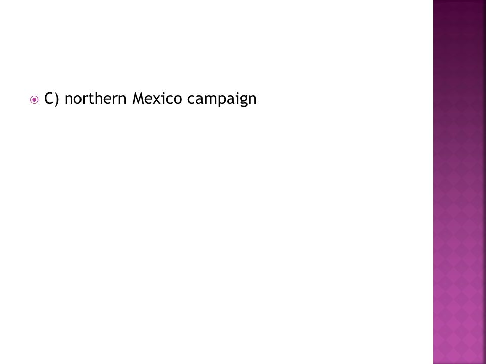  C) northern Mexico campaign