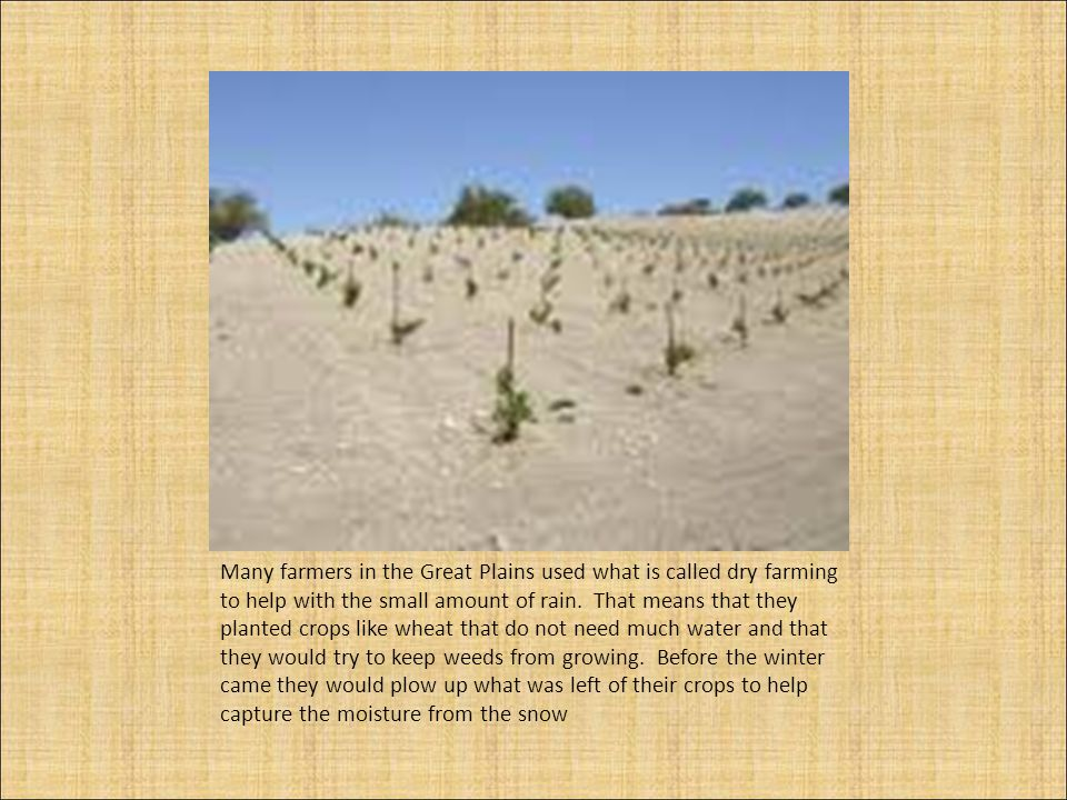 Many farmers in the Great Plains used what is called dry farming to help with the small amount of rain.