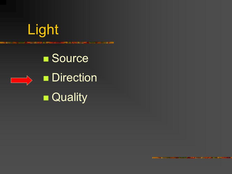 Light Sources Artificial light Flash Strobes Incandescent Neon Mercury Vapor Strobes Max Waldman