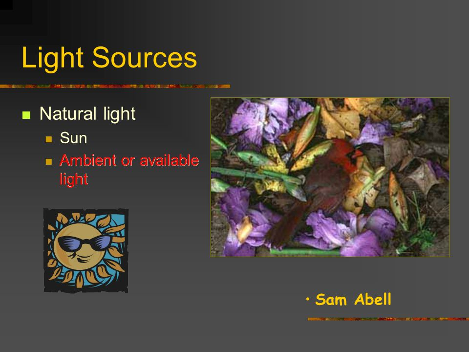 Light Sources Natural light Sun Ambient or available light Sun Cindy Sherman