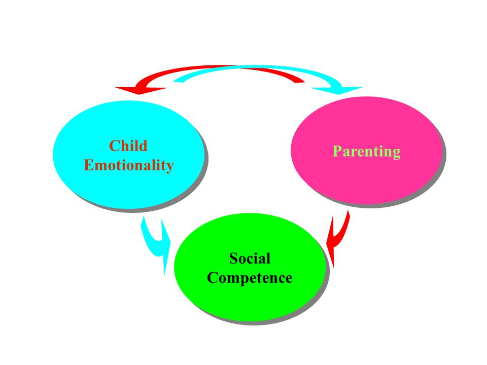 Social Competence Parenting Child Emotionality