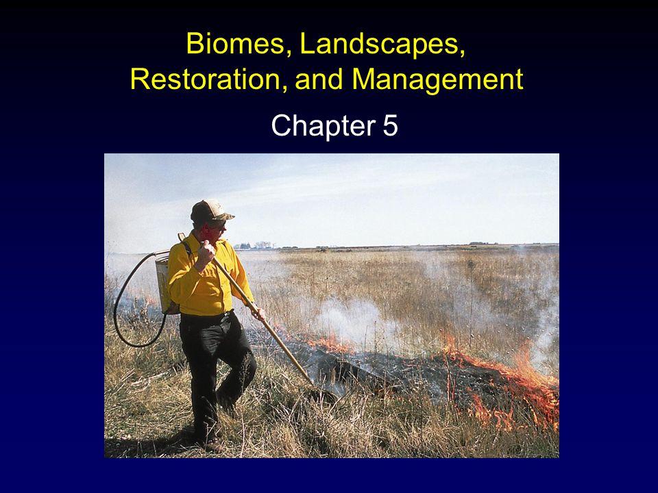 Outline: Terrestrial Biomes Aquatic Ecosystems Human Disturbance