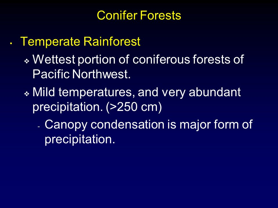 Conifer Forests Temperate Rainforest  Wettest portion of coniferous forests of Pacific Northwest.  Mild temperatures, and very abundant precipitatio
