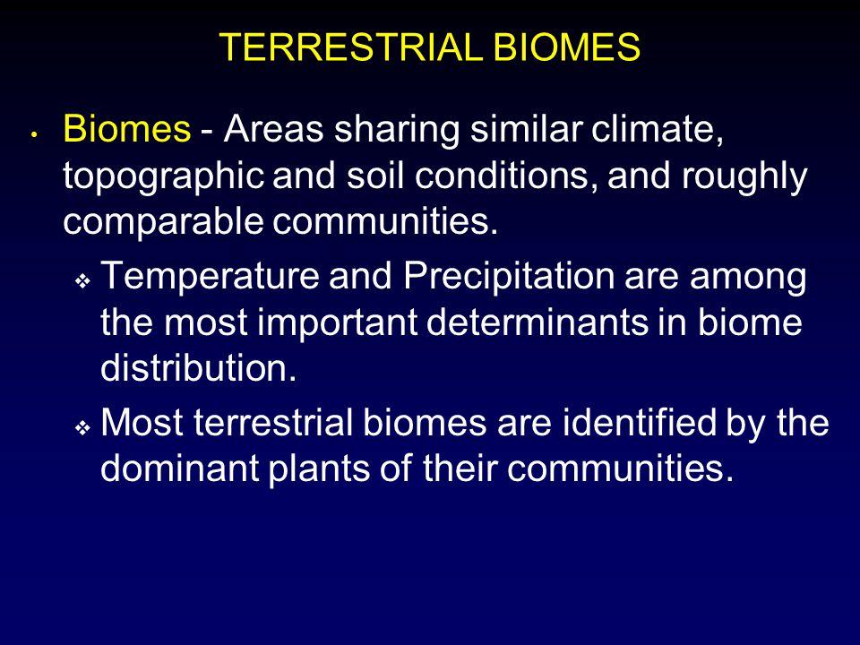Critical Aquatic Characteristics Dissolved Substances Suspended Matter Depth Temperature Flow Rate Bottom Characteristics Internal Convective Currents Connectivity to Other Aquatic Ecosystems