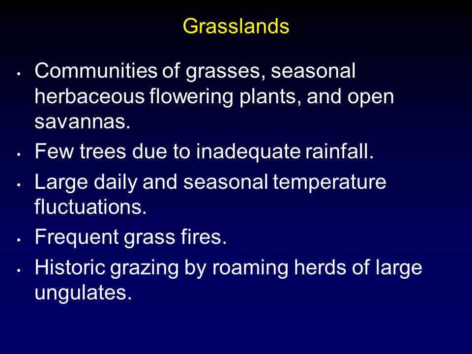 Grasslands Communities of grasses, seasonal herbaceous flowering plants, and open savannas. Few trees due to inadequate rainfall. Large daily and seas