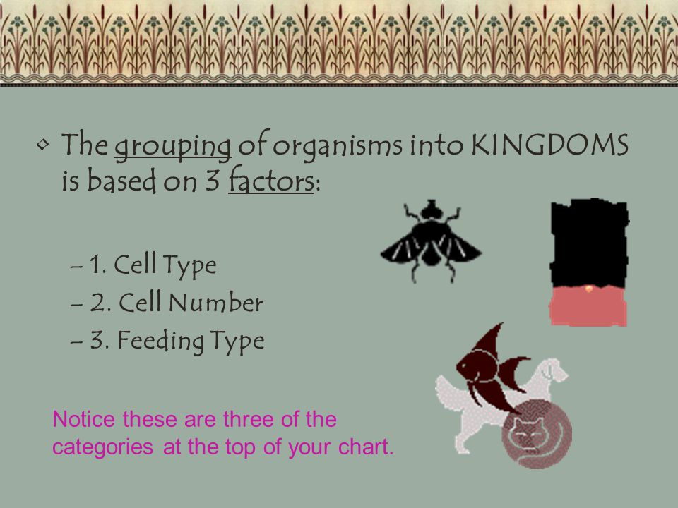 1.Cell Type- The presence or absence of a nucleus.