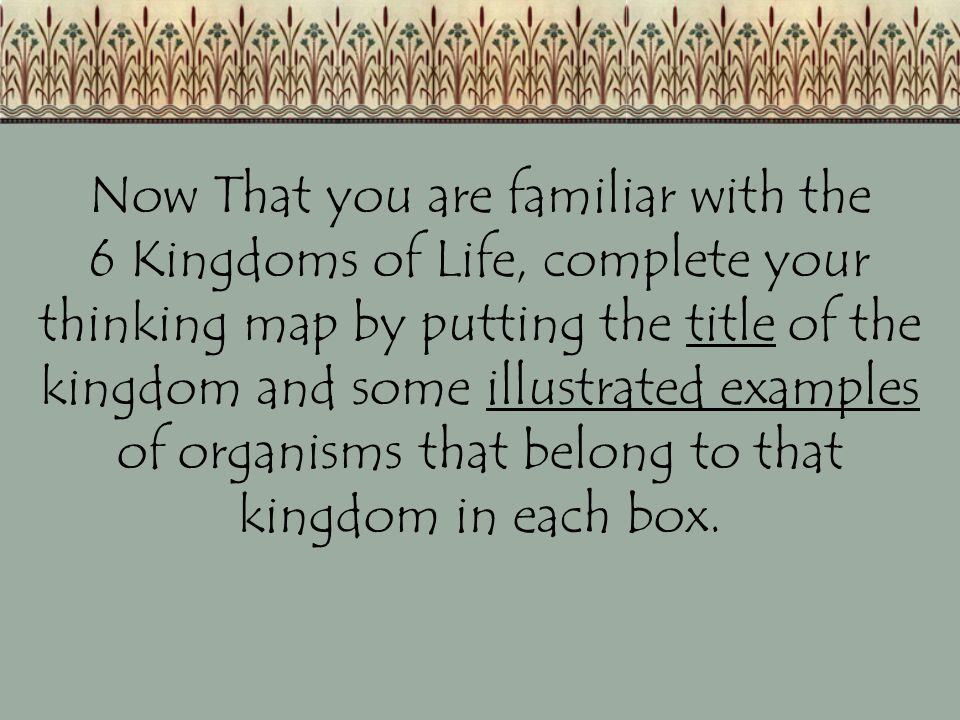 Now That you are familiar with the 6 Kingdoms of Life, complete your thinking map by putting the title of the kingdom and some illustrated examples of