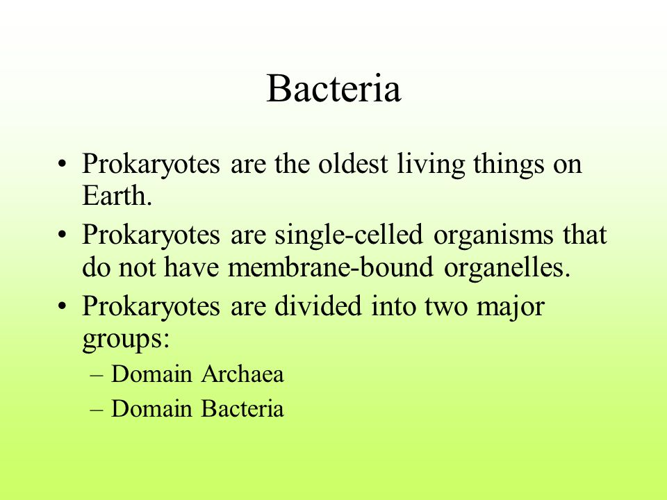 Bacteria Prokaryotes are the oldest living things on Earth.