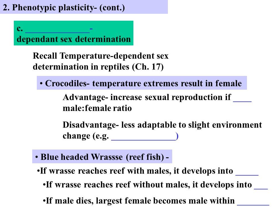 2. Phenotypic plasticity- (cont.) c.