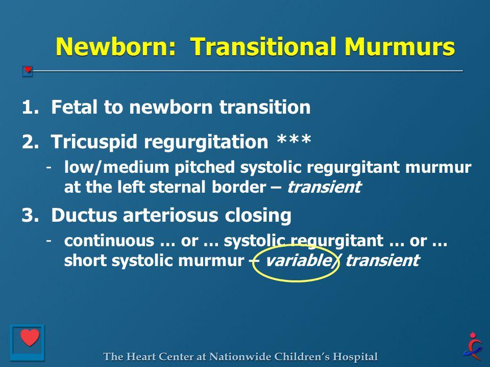 Newborn: Transitional Murmurs 1. Fetal to newborn transition 2. Tricuspid regurgitation *** -low/medium pitched systolic regurgitant murmur at the lef