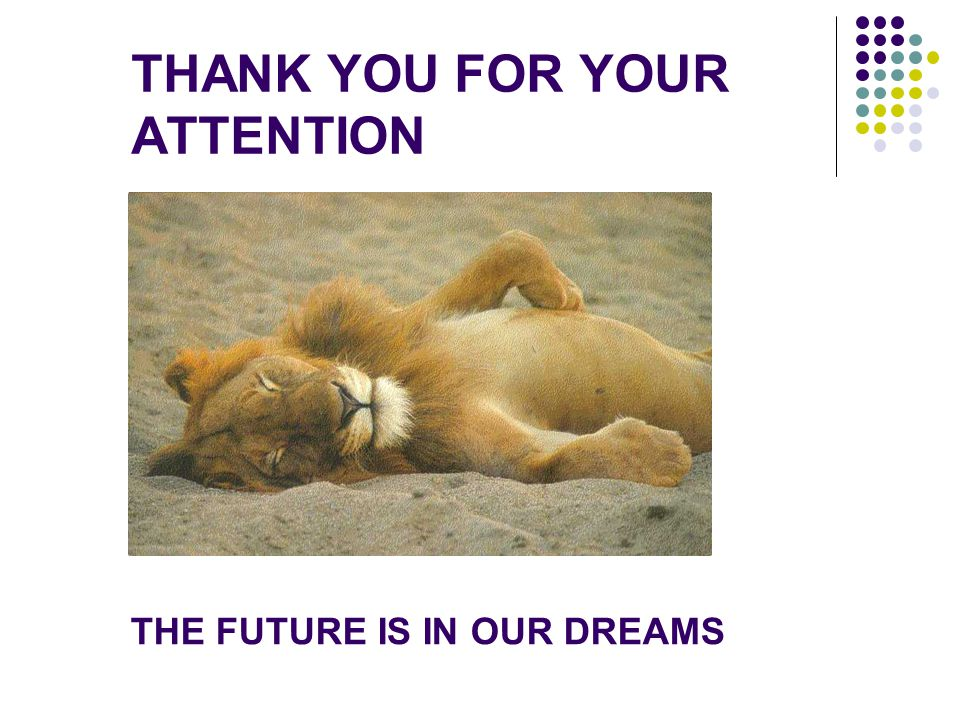THANK YOU FOR YOUR ATTENTION THE FUTURE IS IN OUR DREAMS