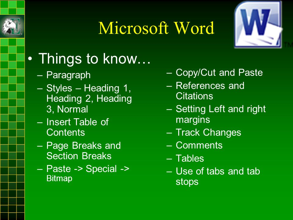 Microsoft Word –Paragraph –Styles – Heading 1, Heading 2, Heading 3, Normal –Insert Table of Contents –Page Breaks and Section Breaks –Paste -> Special -> Bitmap –Copy/Cut and Paste –References and Citations –Setting Left and right margins –Track Changes –Comments –Tables –Use of tabs and tab stops Things to know…