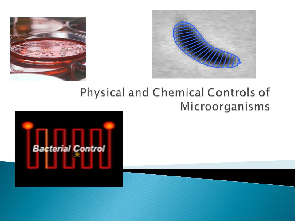 Factors Affecting the Efficacy of Antimicrobial Methods ◦ Relative susceptibility of microorganisms  Effectiveness of germicides classified as high, intermediate, or low  High-level kill all pathogens, including endospores  Intermediate-level kill fungal spores, protozoan cysts, viruses, and pathogenic bacteria  Low-level kill vegetative bacteria, fungi, protozoa, and some viruses