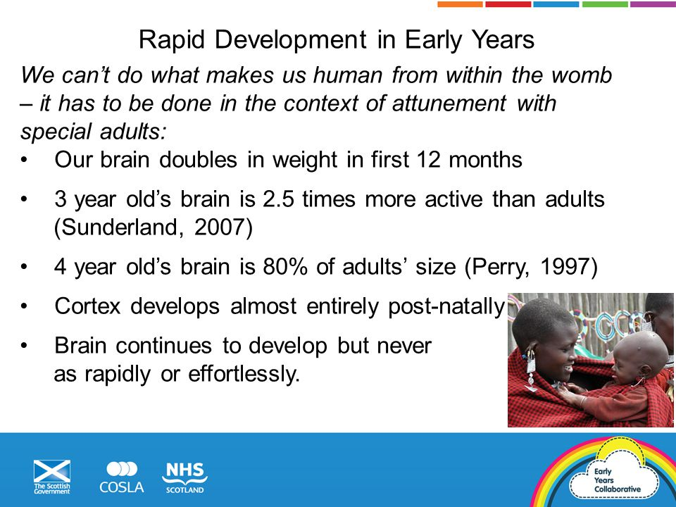 Rapid Development in Early Years We can't do what makes us human from within the womb – it has to be done in the context of attunement with special adults: Our brain doubles in weight in first 12 months 3 year old's brain is 2.5 times more active than adults (Sunderland, 2007) 4 year old's brain is 80% of adults' size (Perry, 1997) Cortex develops almost entirely post-natally Brain continues to develop but never as rapidly or effortlessly.